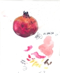 Miniature Pomegranate. Watercolor on chocolate wrap. Kuwait. January 2010