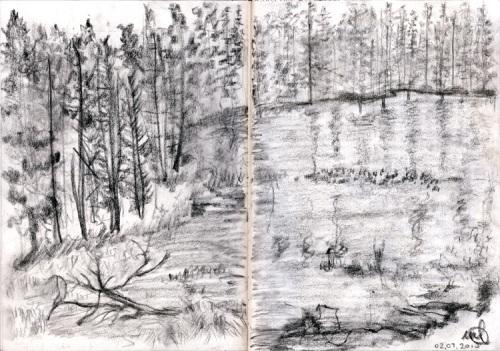Yosemite. Charcoal on paper. July 2010 (date is in Italian)
