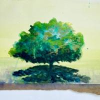 A New Series : Spirit Trees